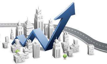 项目投资管理案例:雀巢公司