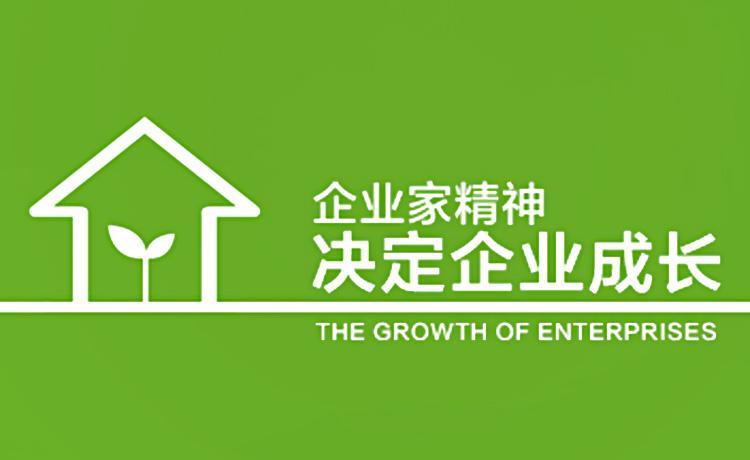 《企业家精神决定企业成长》课程学习笔记